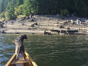 Fourth Lake - Nanaimo Lakes