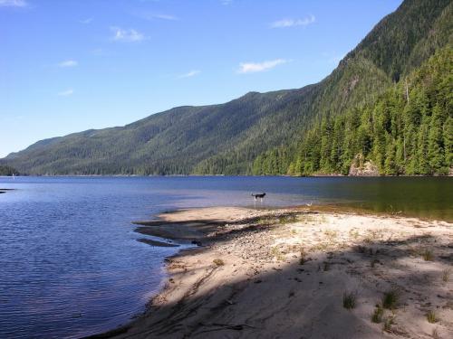 Kennedy Lake T213