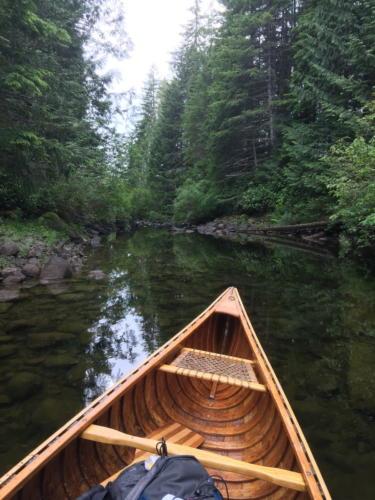 Sayward Forest 2018 005
